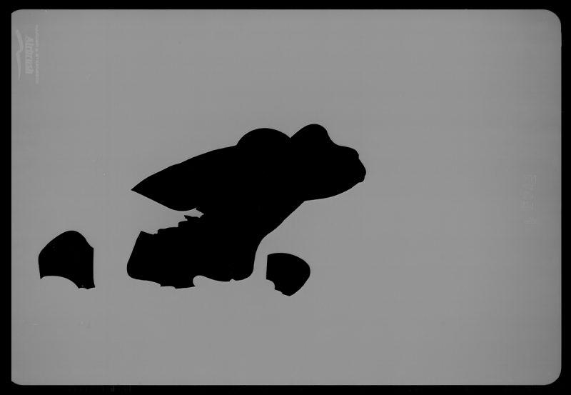 Frog Wildlife Stencils